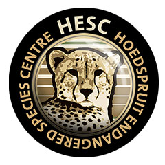 HESC (Hoedspruit Endangered Species Centre)